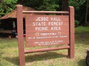 Jesse_Hall_State_Forest_Picnic_Area.JPG